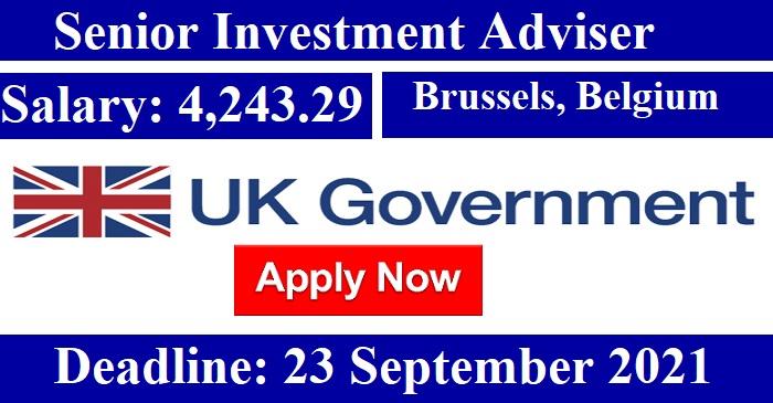 Senior Investment Adviser job in #Brussels, #Belgium